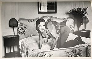 「HELUMUT NEWTON SPECIAL COLLECTION 24 PHOTO LITHOS / HELUMUT NEWTON ヘルムート・ニュートン」画像2